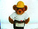 teddy bear's Avatar
